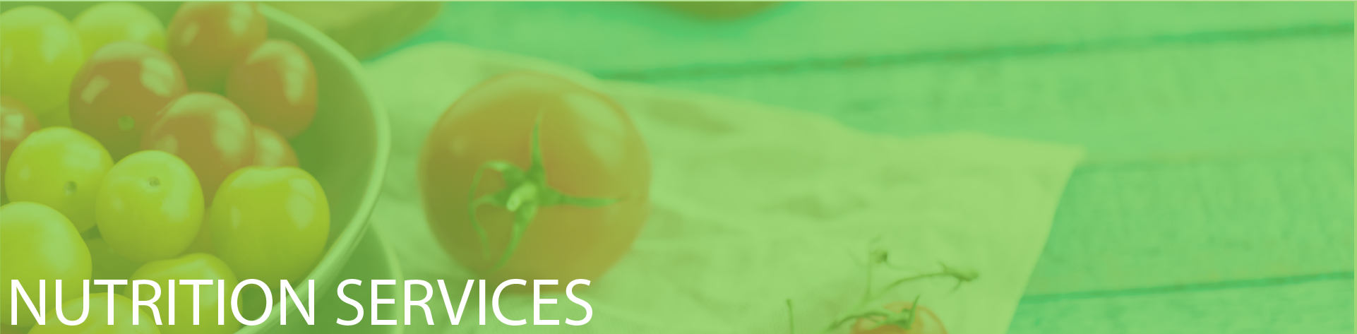 Nutrition Services Header Image